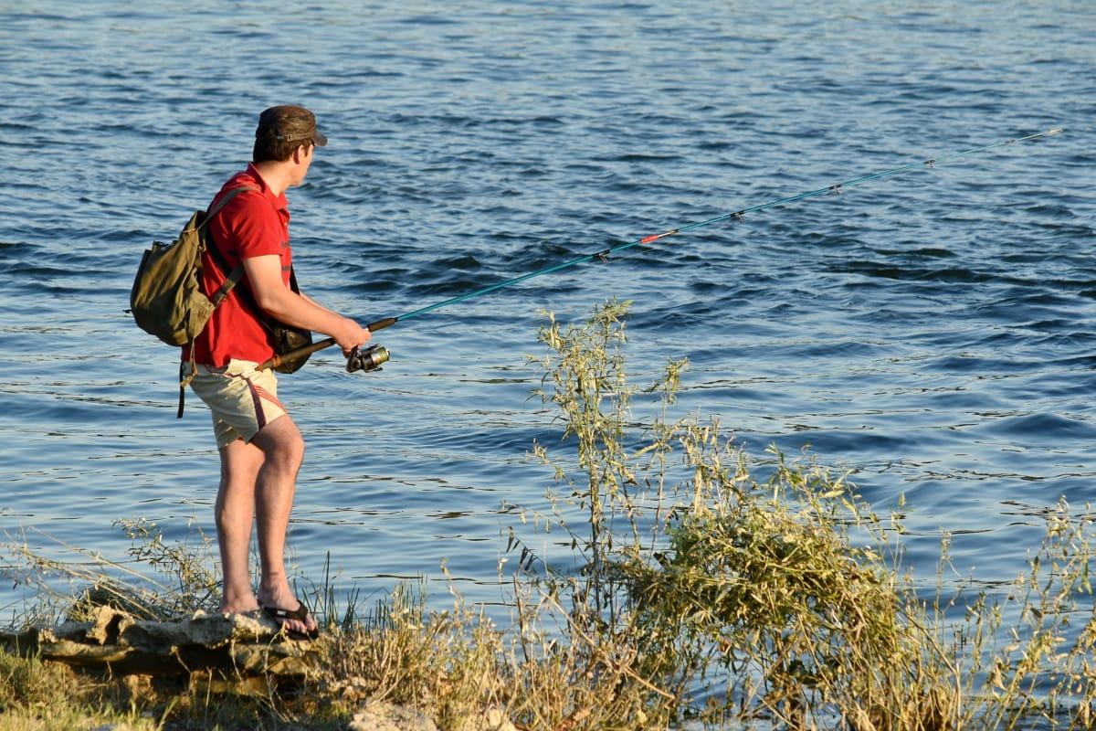 fishing rod, recreation, fisherman, fishing, water, ocean, nature, leisure, summer, lake
