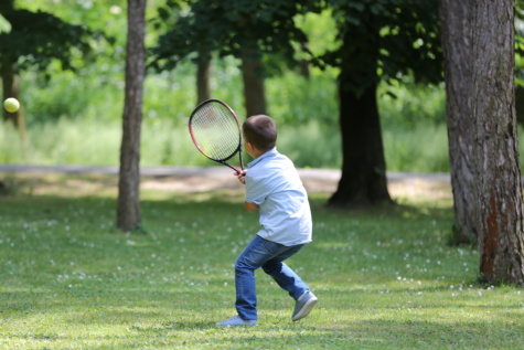 forest, tennis racket, tennis, picnic, outdoor, recreation, ball, racket, sport, park