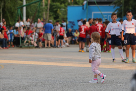 toddler, baby, amateur, audience, team, spectator, soccer, crowd, competition, runner