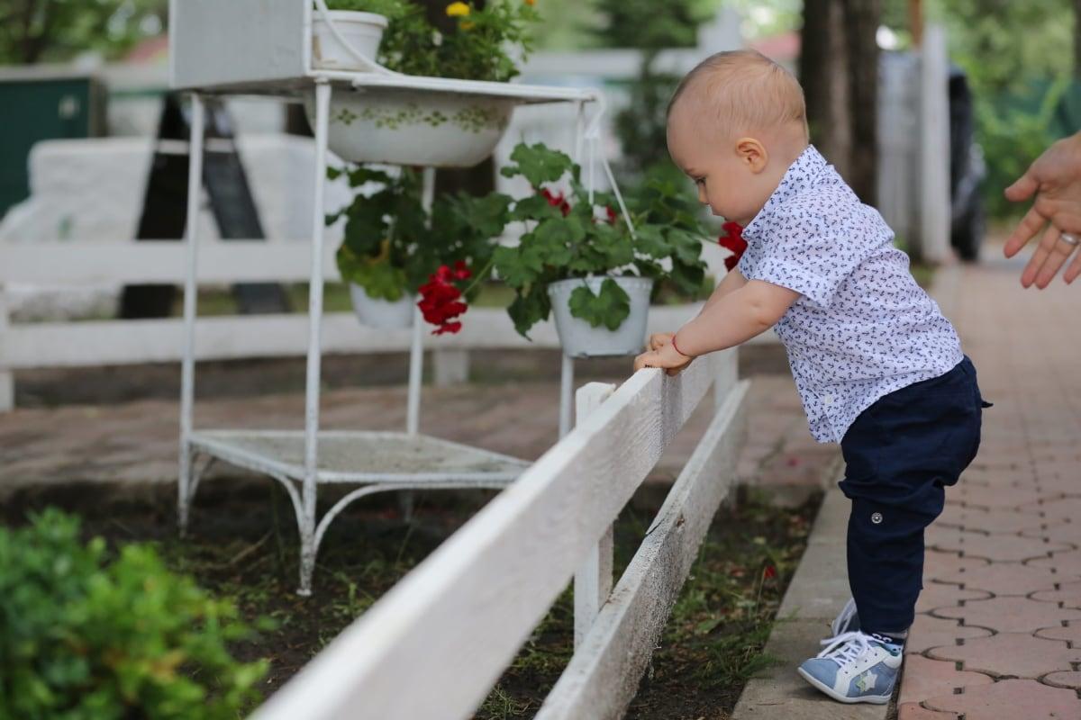baby, toddler, first, step, child, outdoors, garden, nature, summer, leisure