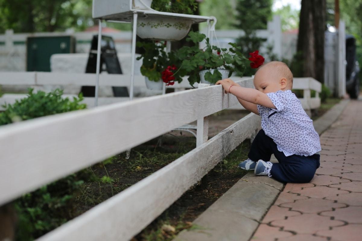 toddler, baby, picket fence, garden, child, portrait, outdoors, nature, park, summer