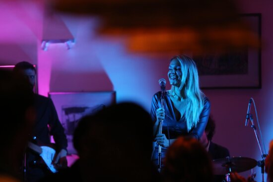singer, discotheque, singing, audience, spectator, party, rock concert, concert hall, nightclub, nighttime