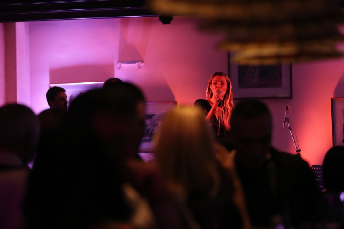 discotheque, nightclub, concert hall, auditorium, crowd, spectator, audience, music, stage, performance