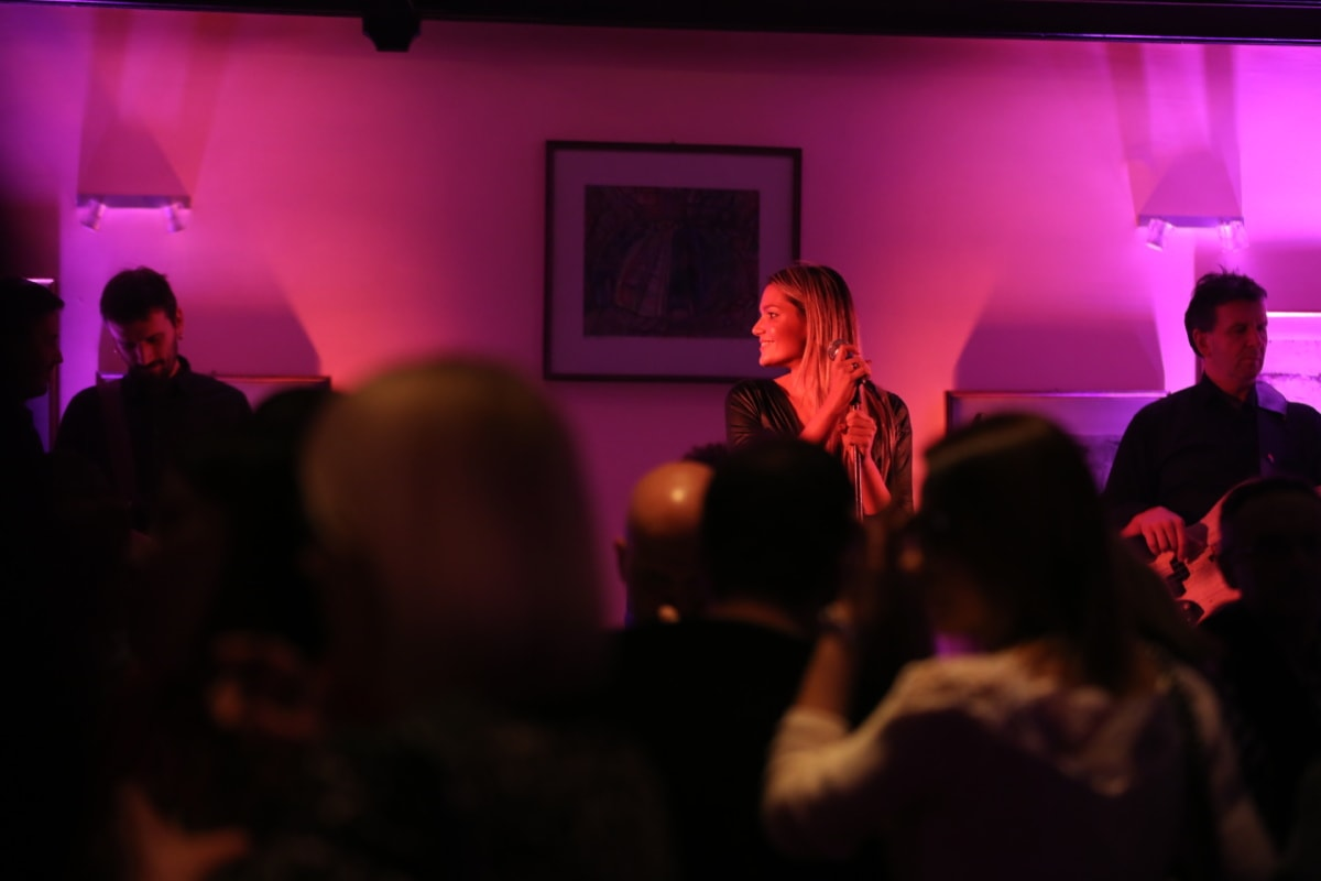 discotheque, nightclub, singer, portrait, cafeteria, woman, crowd, spectator, audience, person