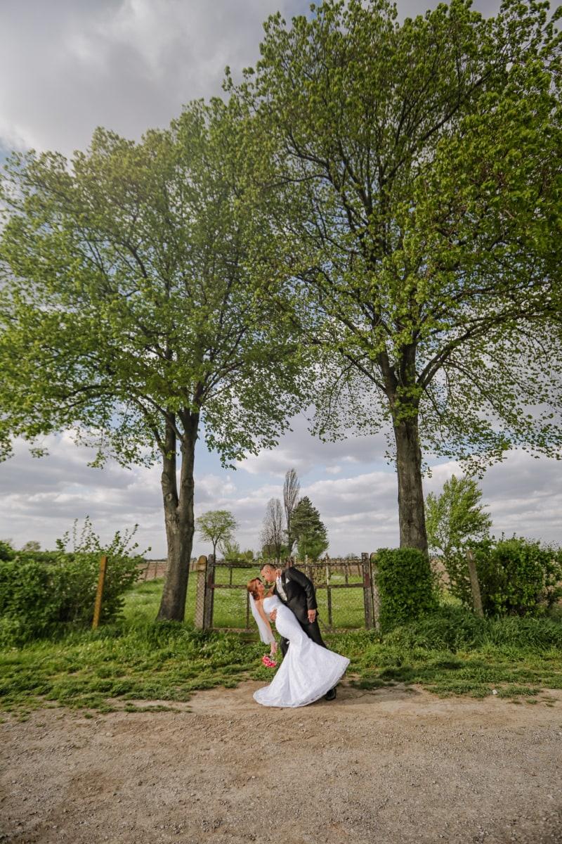 man, bruid, dorp, romantische, trouwjurk, knuffel, boom, park, bruiloft, bruidegom