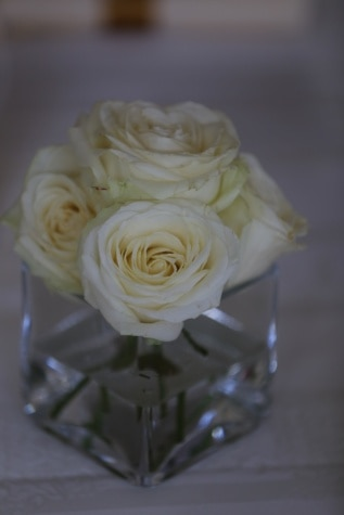 white flower, roses, vase, elegance, glass, romance, flower, rose, petal, bouquet