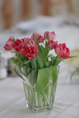 vase, pinkish, tulips, cafeteria, tablecloth, table, tulip, plant, bouquet, flower