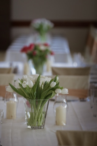 tulips, white flower, candlestick, lunchroom, candles, cafeteria, dining area, indoors, vase, table