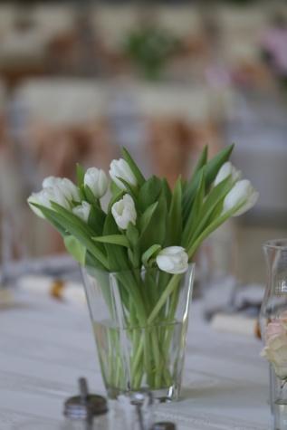 biely kvet, tulipány, elegantné, Váza, kvet, Kytica, dekorácie, rastlín, usporiadanie, príroda