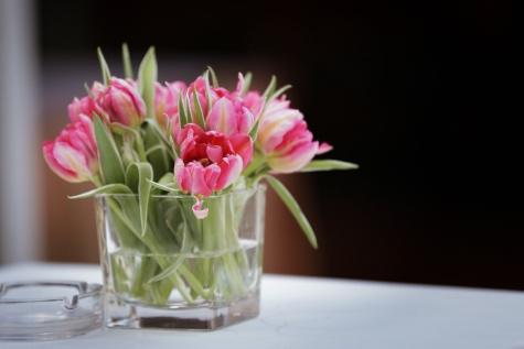 tulipes, vase, Cendrier, nappe, élégance, table, fleur, fleurs, bouquet, arrangement