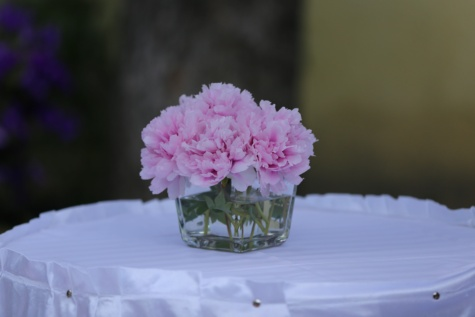 vase, carnation, arrangement, tablecloth, silk, pink, flowers, plant, flower, shrub