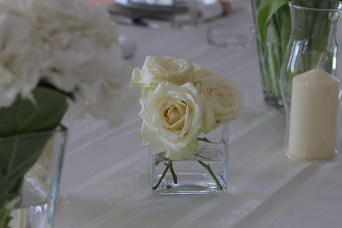 candlestick, white flower, candles, vase, elegance, rosette, tablecloth, bouquet, decoration, arrangement