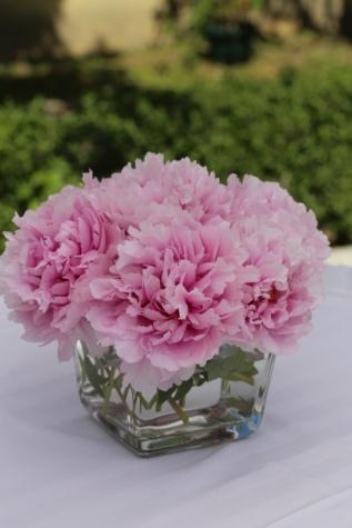 Clavel, florero de, pétalos de, rosado, arreglo, tabla, mantel, planta, rosa, naturaleza