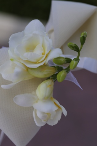 silk, white flower, flower bud, decoration, pastel, petal, white, flower, bud, flowers