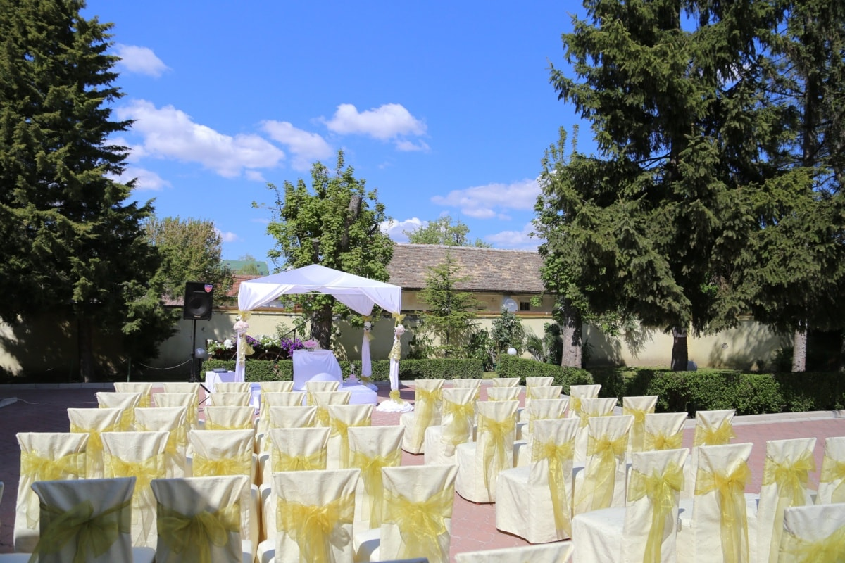 garden, wedding, decorative, chairs, ceremony, flower, outdoors, nature, celebration, tree