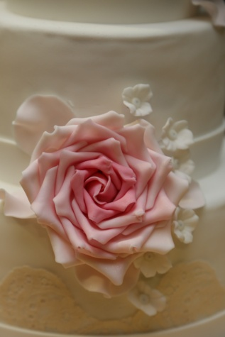 cake, wedding cake, white, cream, rose, flower, pink, roses, love, wedding