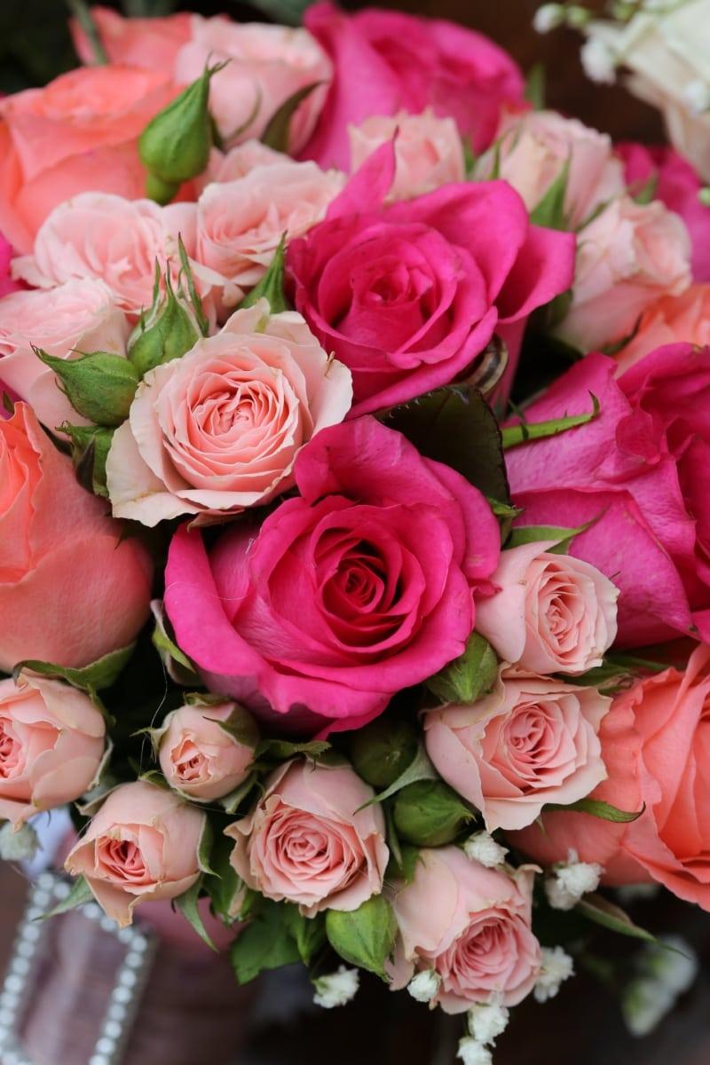 bouquet, roses, love, arrangement, decoration, flower, romance, rose, nature, cluster