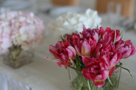 tulpaner, rödaktig, vas, glas, blomma, rosa, bröllop, spring, Anläggningen, blommor