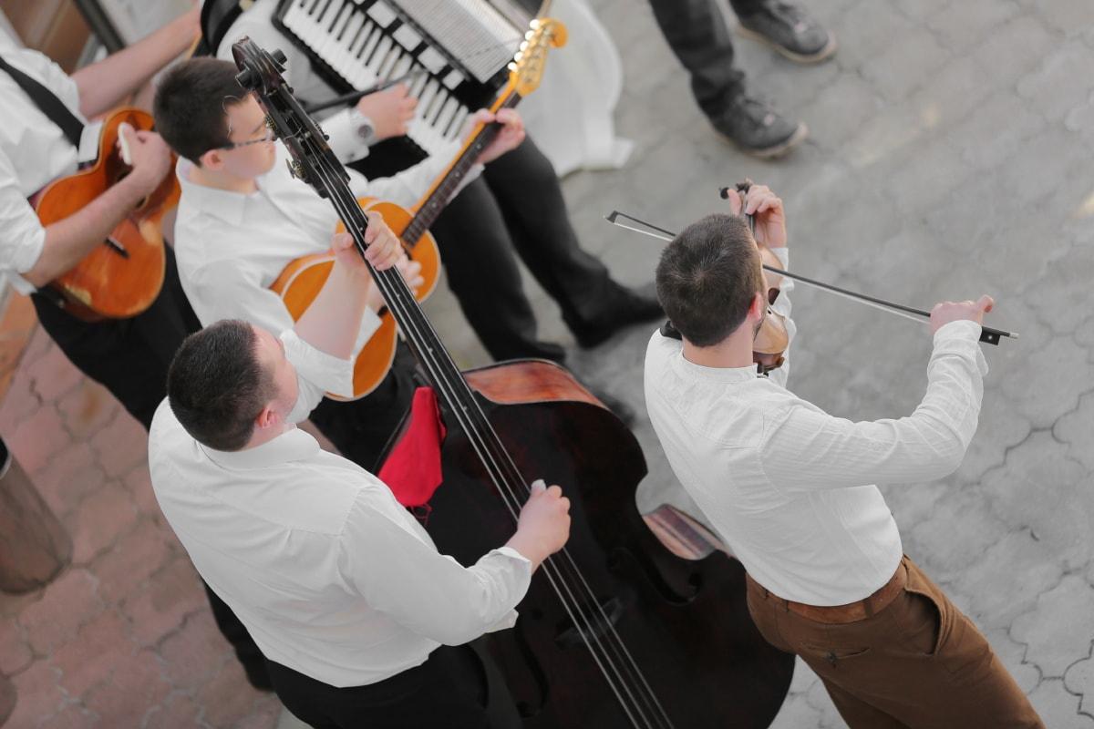 гитарист оркестра жилина фото телеангиэктазий сосудистых
