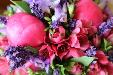 roses, grape hyacinth, tulips, bouquet, tulip, arrangement, flowers, blossom, flower, decoration