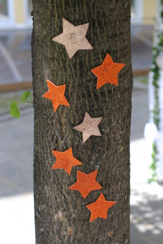 decorative, trees, bark, star, stars, wood, nature, tree, decoration, color