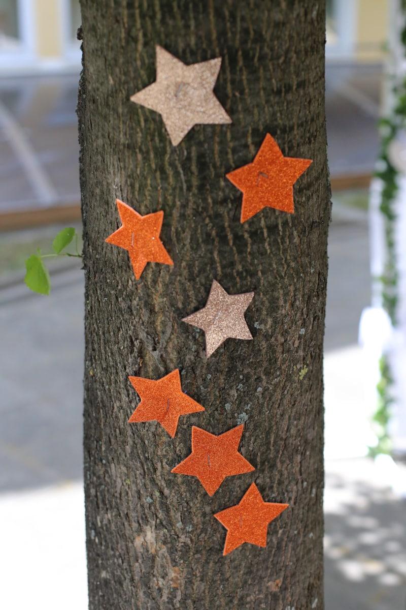 decorative, trees, bark, star, stars, wood, nature, tree, decoration, color