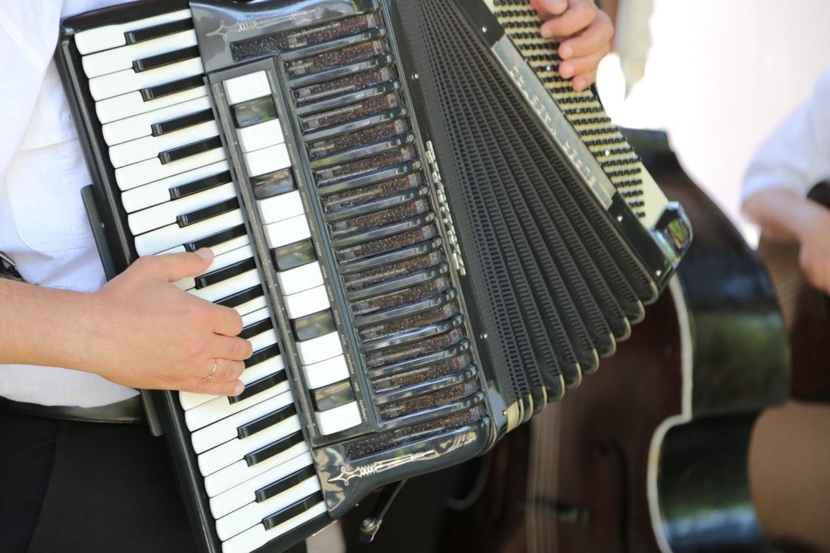 Musik, Musiker, Klang, Instrument, Konzert, akustisch, Menschen, Performance, Band, Song