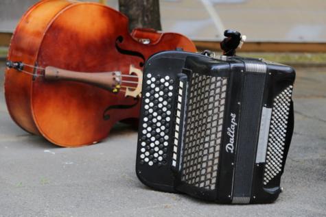 Folk, nostalgie, muziek, instrument, wijnoogst, muzikale, muzikant, geluid, tekenreeks, rustiek
