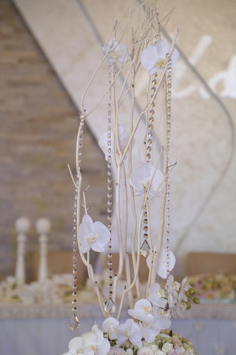 fleur blanche, nature morte, bouquet, Orchid, fleur, nature, amour, engagement, belle, décoration