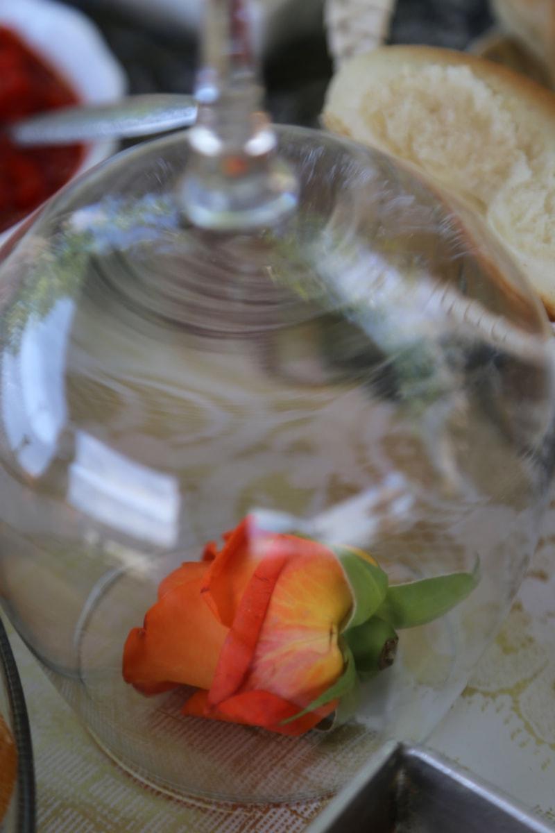 Rose, en dessous, Crystal, élégant, verre, repas, alimentaire, dîner, déjeuner, salade