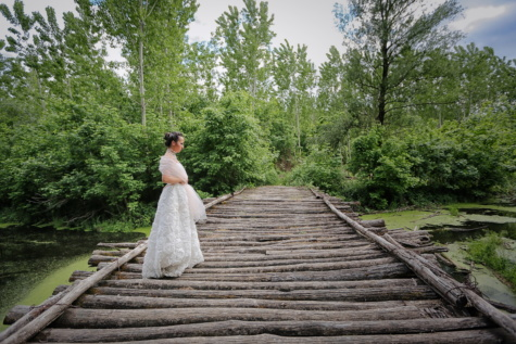 wooden, bridge, bride, wedding dress, swamp, rural, groom, wood, tree, nature
