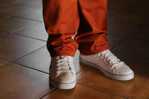 sneakers, reddish, pants, fashion, footwear, shoe, shoes, clothing, leather, pair