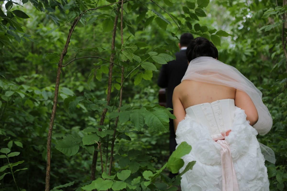 la mariée, forêt, sentier de la forêt, robe de mariée, voile, jeune marié, mariage, robe, bonheur, amour