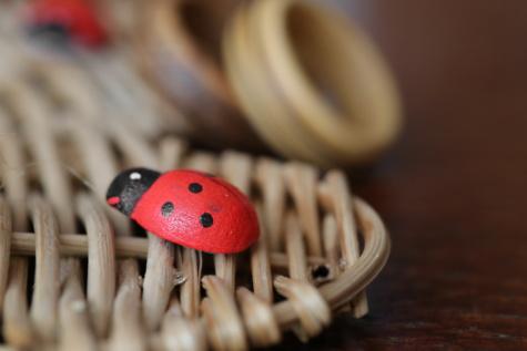 lieveheersbeestje, houten, cadeau, dichtbij, handgemaakte, geleedpotige, kever, kever, insect, zomer