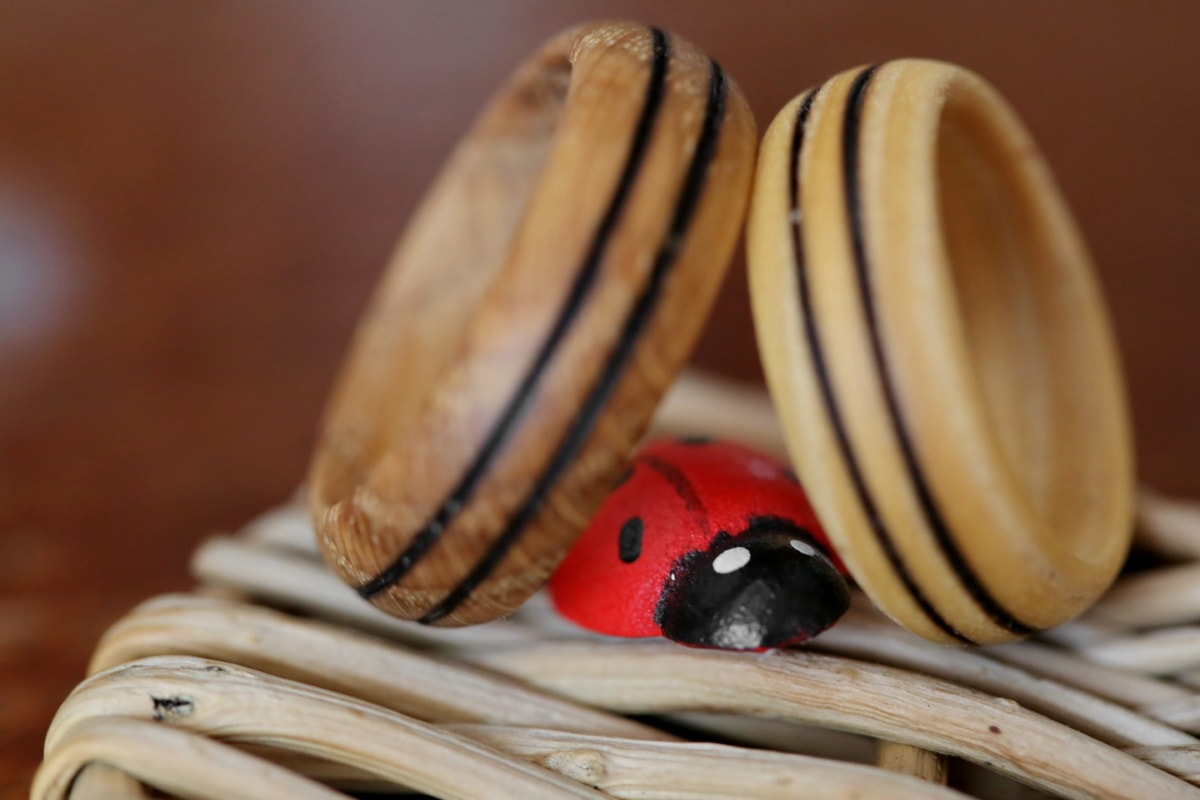 wedding ring, handmade, wooden, detail, ladybug, traditional, wood, still life, homemade, blur