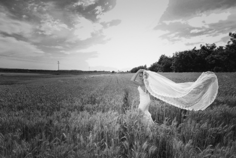 bride, wedding dress, veil, pretty girl, young woman, wheatfield, wheat, field, monochrome, grass