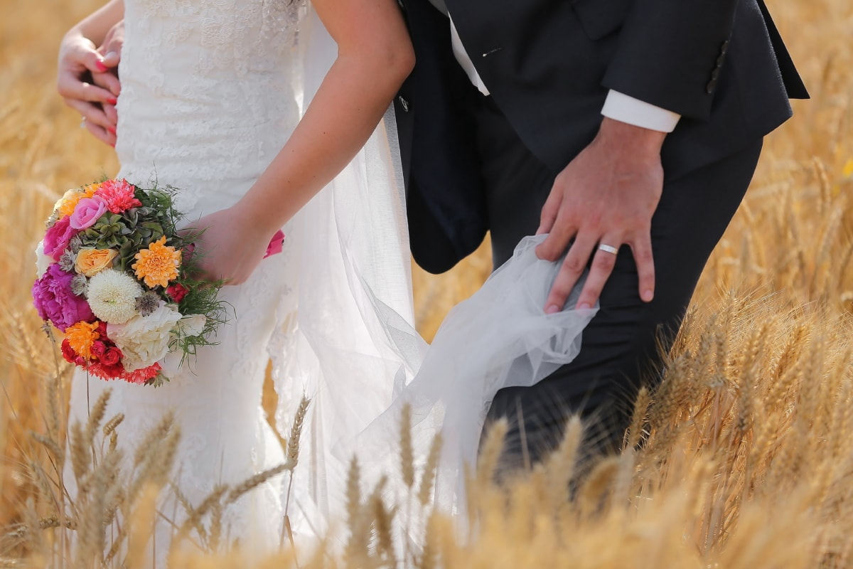 barley, field, wedding dress, wedding bouquet, suit, marriage, groom, love, woman, couple