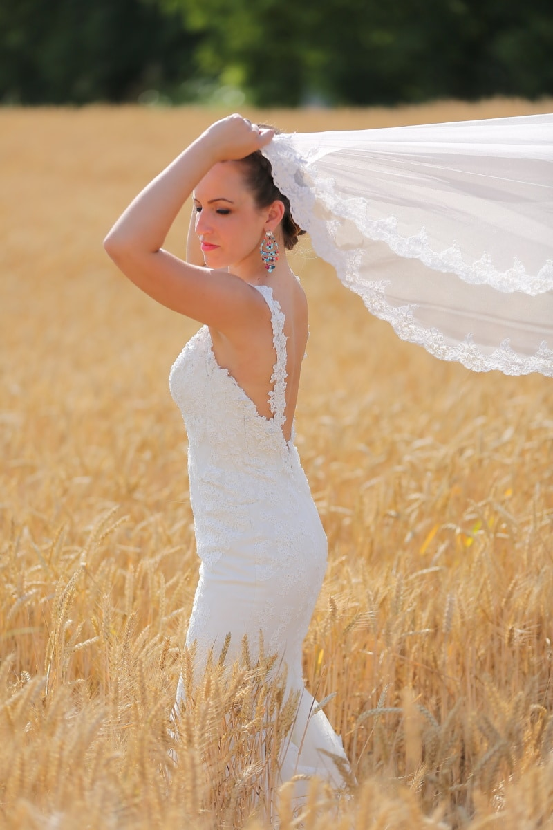 wedding, agriculture, wedding dress, side view, bride, barley, woman, nature, summer, fair weather