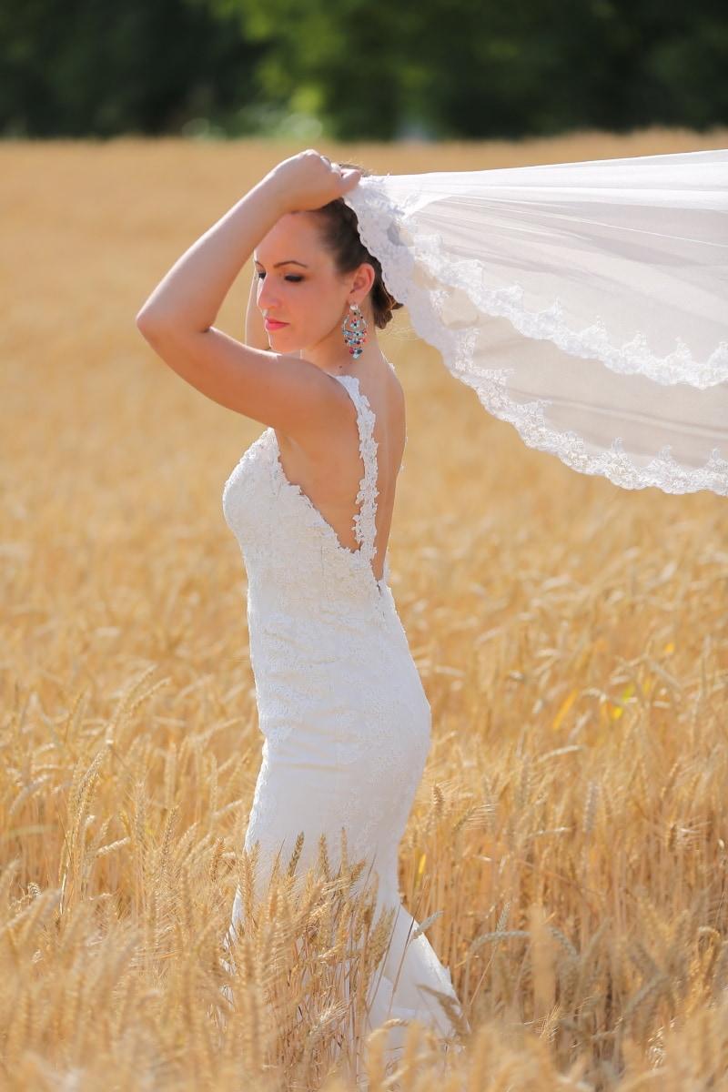 mariage, Agriculture, robe de mariée, vue de côté, la mariée, orge, femme, nature, été, beau temps