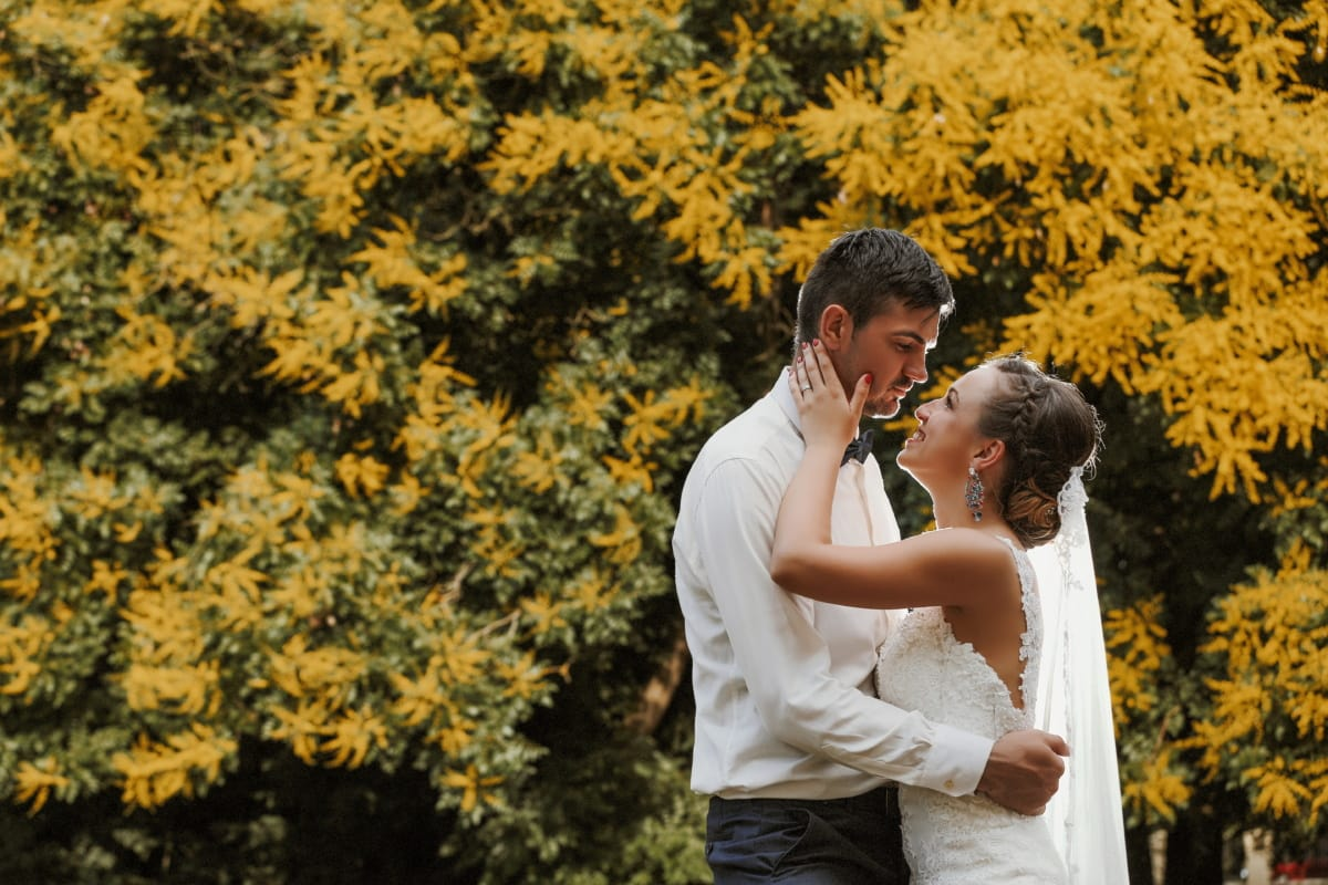 groom, bride, love, hug, autumn, marriage, wedding dress, life, togetherness, wedding