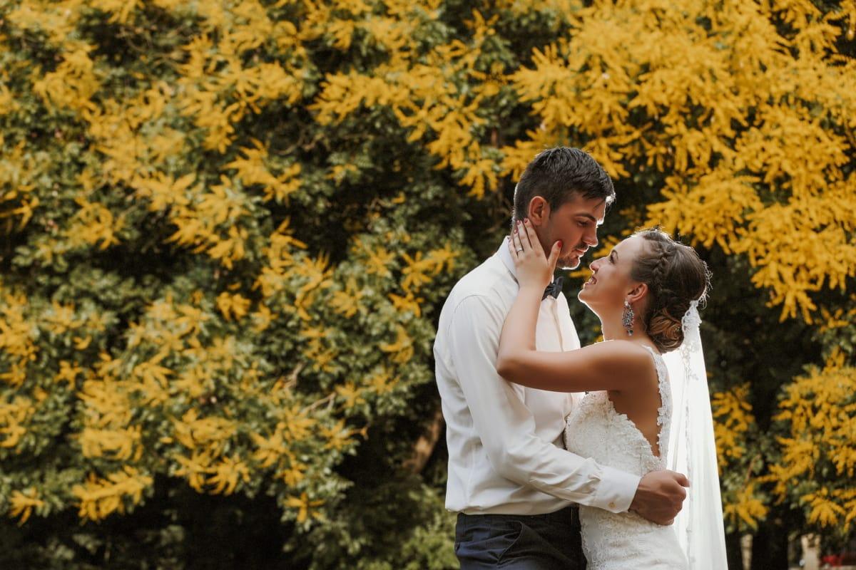 ženich, nevěsta, láska, objetí, podzim, manželství, svatební šaty, život, pospolitosti, svatba