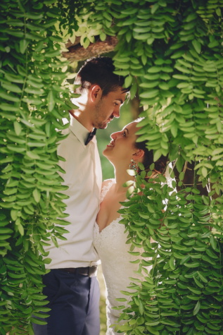 affection, hug, bride, groom, green leaves, beard, leaf, flora, tree, garden