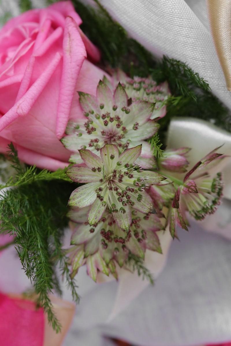 rose, pinkish, arrangement, bouquet, wedding bouquet, silk, close-up, flower, flowers, plant