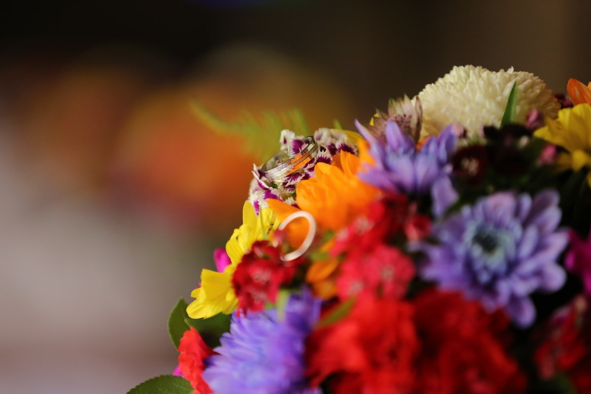 wedding bouquet, wedding ring, colorful, flowers, plant, nature, spring, bouquet, flower, petal
