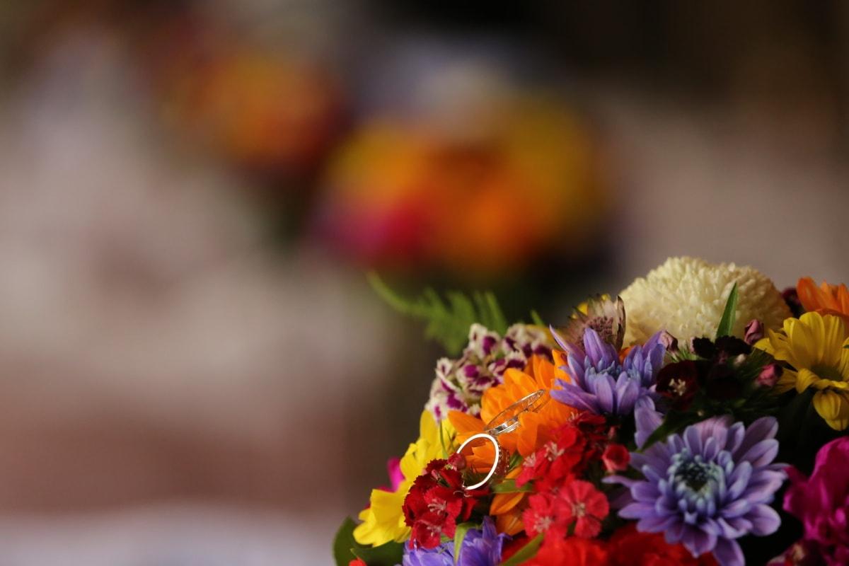 bague de mariage, bouquet, fleurs, floue, pastel, cadeaux, arrangement, printemps, décoration, nature