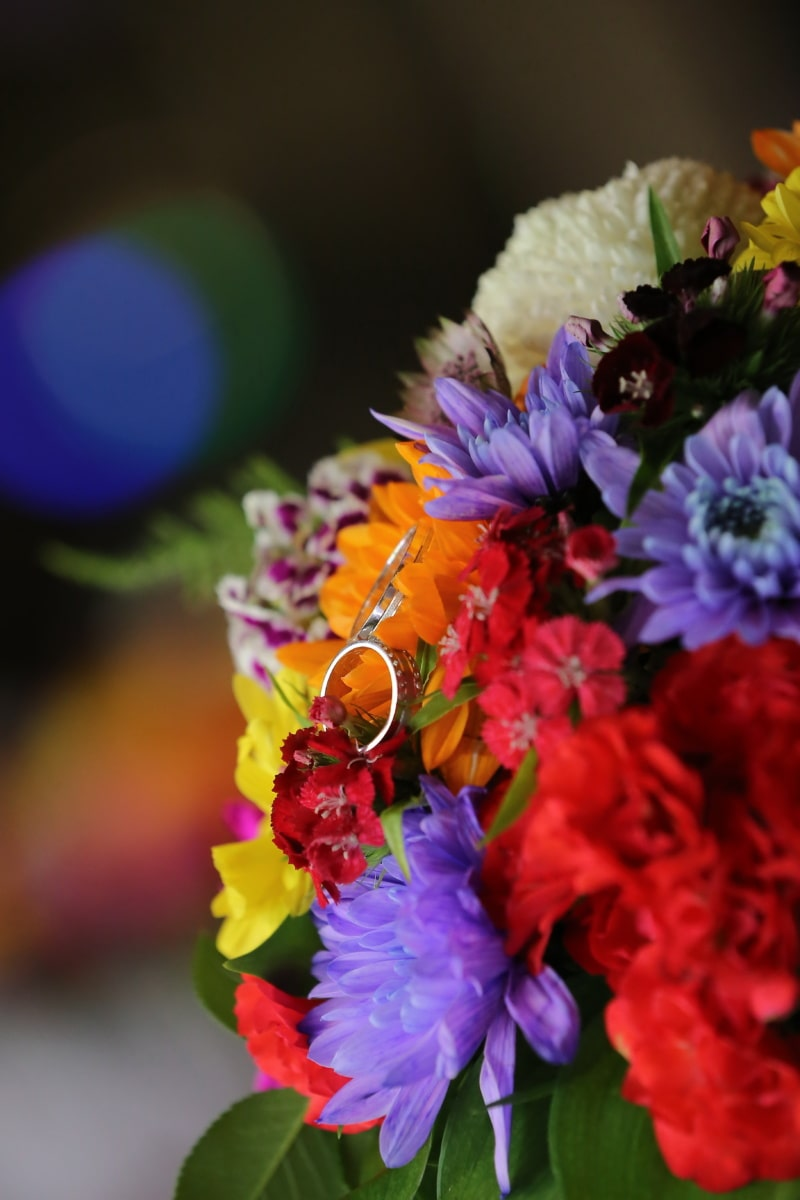 cincin, Platinum, cincin kawin, buket pernikahan, bunga, pengaturan, karangan bunga, dekorasi, bunga, tanaman