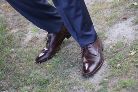 leather, brown, shoes, businessman, pants, grassy, ground, clothing, footwear, shoe