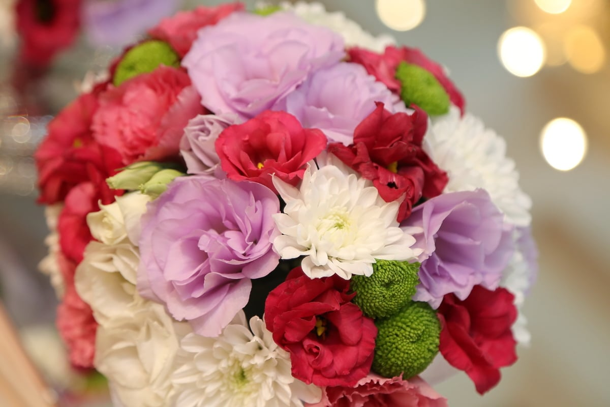bouquet de mariage, romance, Rose, fleur, arrangement, bouquet, décoration, nature, feuille, cluster