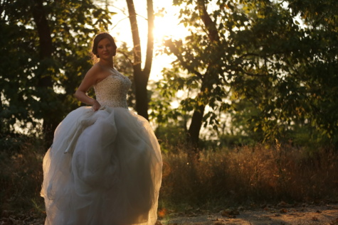 gorgeous, bride, wedding dress, landscape, sunshine, wedding, love, girl, groom, dress