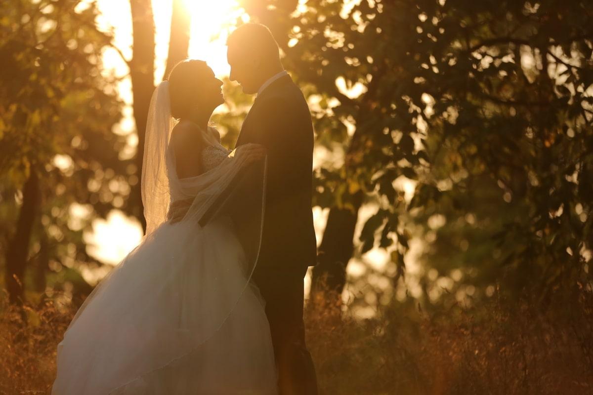 femme, ensoleillement, jeune marié, automne, étreinte, marié, la mariée, coucher de soleil, robe, mariage